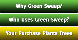 Green Sweep